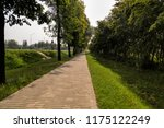 footpath in the park area | Shutterstock . vector #1175122249