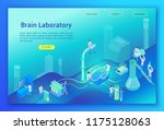 laboratory researching brain... | Shutterstock .eps vector #1175128063