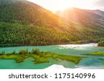 summer scenery at wolong bay ... | Shutterstock . vector #1175140996