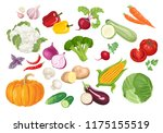 set of vegetables in flat style.... | Shutterstock .eps vector #1175155519