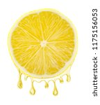 sliced lemon with a juice... | Shutterstock . vector #1175156053