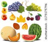 autumn collection. ripe fruit... | Shutterstock .eps vector #1175175796