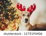 cute dog with reindeer antlers... | Shutterstock . vector #1175193406