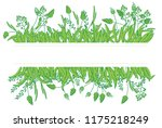 frame flowers grass white and... | Shutterstock .eps vector #1175218249