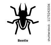 beetle icon vector isolated on... | Shutterstock .eps vector #1175242036