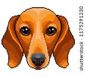 pixel dachshund dog portrait... | Shutterstock .eps vector #1175291230