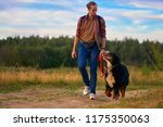 Stock photo dog walking in nature the guy is walking with a big dog on the road outside the city in the field 1175350063