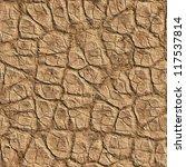 seamless grungy desert texture | Shutterstock . vector #117537814