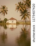 kerala backwaters nature  india | Shutterstock . vector #1175407420