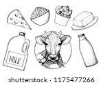 dairy produce hand drawn vector ... | Shutterstock .eps vector #1175477266