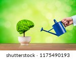 Small photo of Creativity growth, better using brain function and memory improvement concept. Creativity growth represented by tree looks like the human brain watered by businessman.