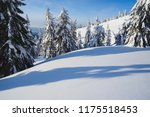 winter mountain forest... | Shutterstock . vector #1175518453