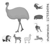 different animals monochrome... | Shutterstock .eps vector #1175534596