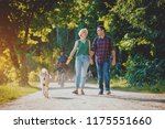 dog with owners spend a day at... | Shutterstock . vector #1175551660