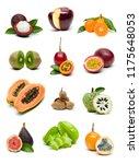 different fresh tropical fruits ... | Shutterstock . vector #1175648053