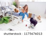 dogs in the middle of mess they ... | Shutterstock . vector #1175676013