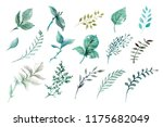 a large set of watercolors... | Shutterstock . vector #1175682049