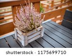 Wooden Table On Patio  Terrace...