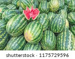 fresh watermelon background in...   Shutterstock . vector #1175729596