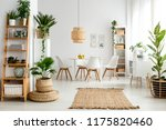 plants and rug in natural... | Shutterstock . vector #1175820460