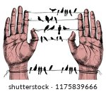 human hands and birds on wires. ... | Shutterstock .eps vector #1175839666