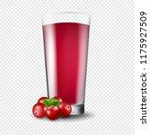 juice of cranberry transparent...   Shutterstock . vector #1175927509