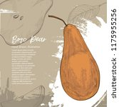 bosc pear. illustration of pear.... | Shutterstock .eps vector #1175955256