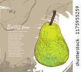 bartlett pear. illustration of... | Shutterstock .eps vector #1175955259
