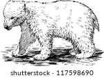 polar bear | Shutterstock .eps vector #117598690