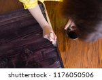 a woman paints by hand the... | Shutterstock . vector #1176050506