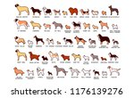 vector set of cartoon dogs... | Shutterstock .eps vector #1176139276