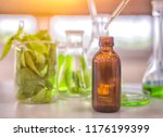 alternative organic herbal drug ... | Shutterstock . vector #1176199399