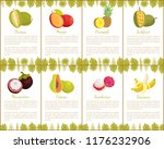 durian and mangosteen slices... | Shutterstock .eps vector #1176232906