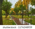 autumn park  rainy background ... | Shutterstock . vector #1176248959