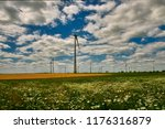 cultivated fields with matured... | Shutterstock . vector #1176316879