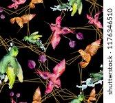 sky bird colorful colibri in a... | Shutterstock . vector #1176346510