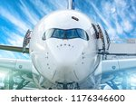 closeup front view of nose of... | Shutterstock . vector #1176346600