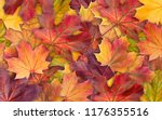 colorful background of autumn... | Shutterstock . vector #1176355516