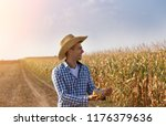 smiling farmer with straw hat... | Shutterstock . vector #1176379636