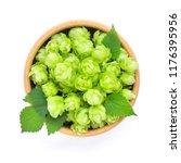 hop cones  humulus  on a wooden ... | Shutterstock . vector #1176395956