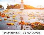 close up of a wet pavement... | Shutterstock . vector #1176400906