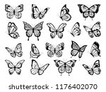 Stock vector silhouettes of butterflies black pictures of funny butterflies insect butterfly black silhouette 1176402070