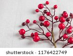 red berries holly on white. red ... | Shutterstock . vector #1176422749
