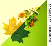 contrast of summer and autumn...   Shutterstock . vector #1176459106