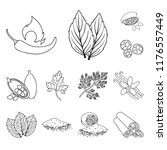 herb and spices outline icons...   Shutterstock .eps vector #1176557449