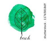vector leaf of beech tree at... | Shutterstock .eps vector #1176581869