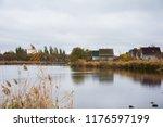 golden autumn reeds. bright...   Shutterstock . vector #1176597199