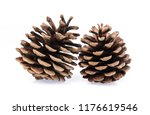 pine cones isolated on white... | Shutterstock . vector #1176619546