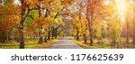 asphalt road with beautiful... | Shutterstock . vector #1176625639