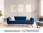 elegant living room interior... | Shutterstock . vector #1176655333